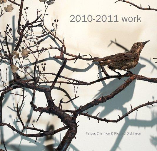 Ver 2010-2011 work por Fergus Channon & Richard Dickinson