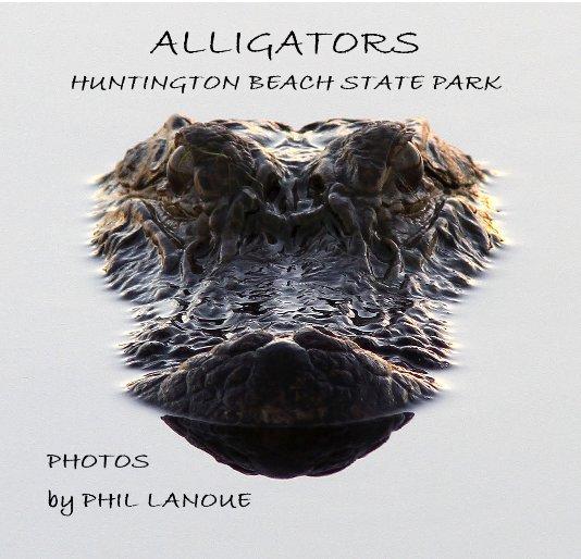 View ALLIGATORS HUNTINGTON BEACH STATE PARK by PHIL LANOUE
