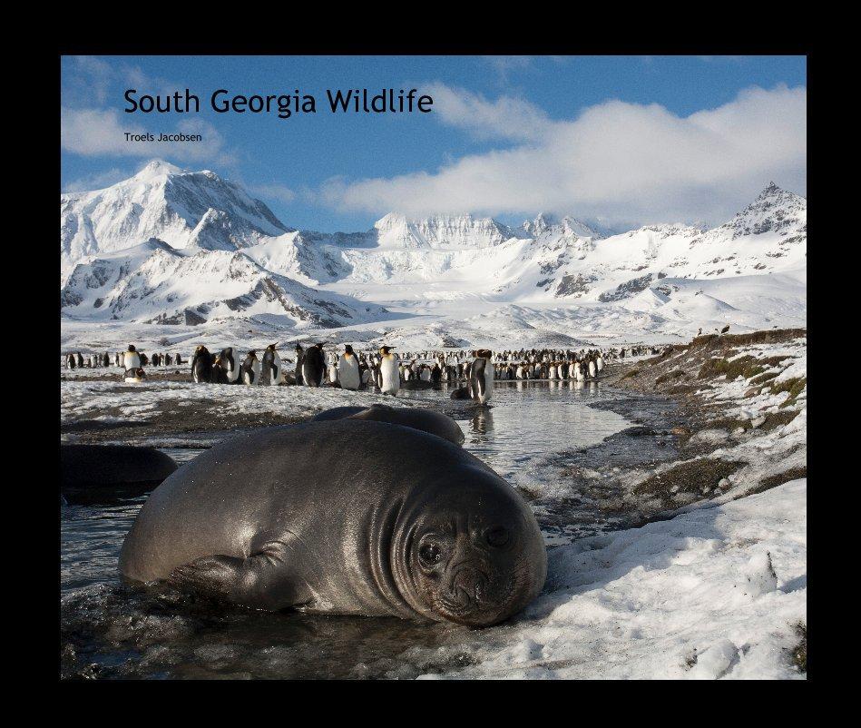 View South Georgia Wildlife by Troels Jacobsen