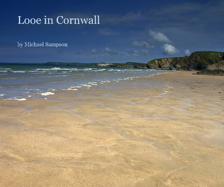 View Looe in Cornwall by Michael Sampson