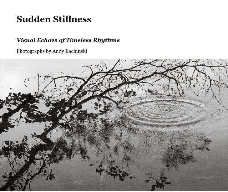View Sudden Stillness by Photographs by Andy Ilachinski
