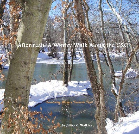 View Aftermath: A Wintry Walk Along the C&O by Jillian C. Watkins