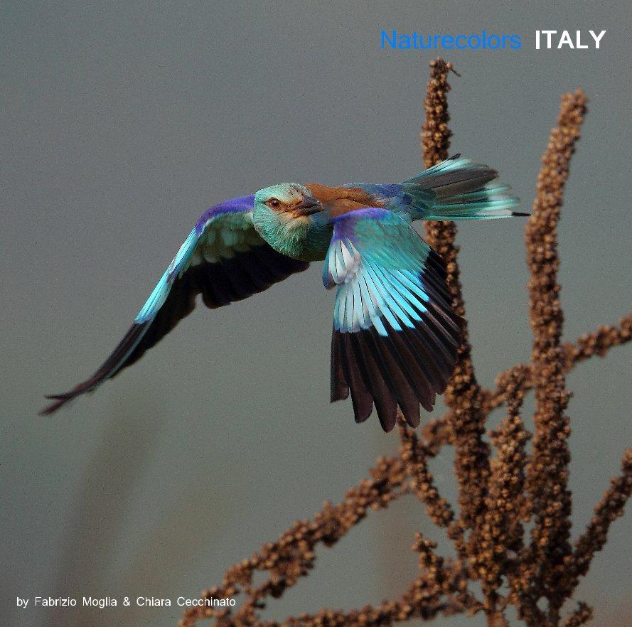View Naturecolors ITALY by Fabrizio Moglia & Chiara Cecchinato