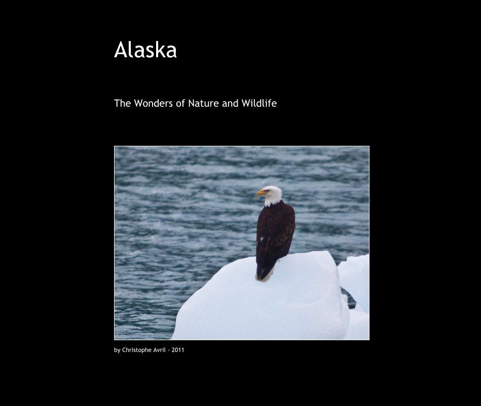 View Alaska by Christophe Avril - 2011