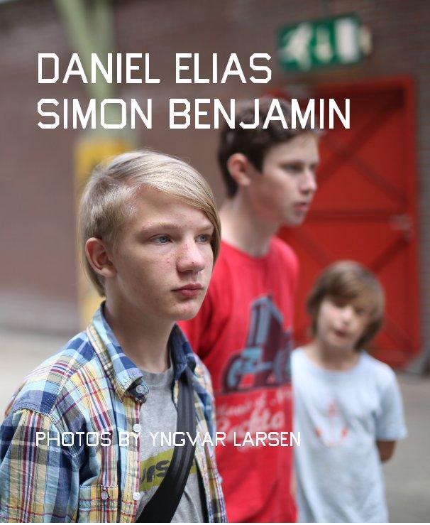 View Daniel Elias Simon Benjamin by Yngvar Larsen