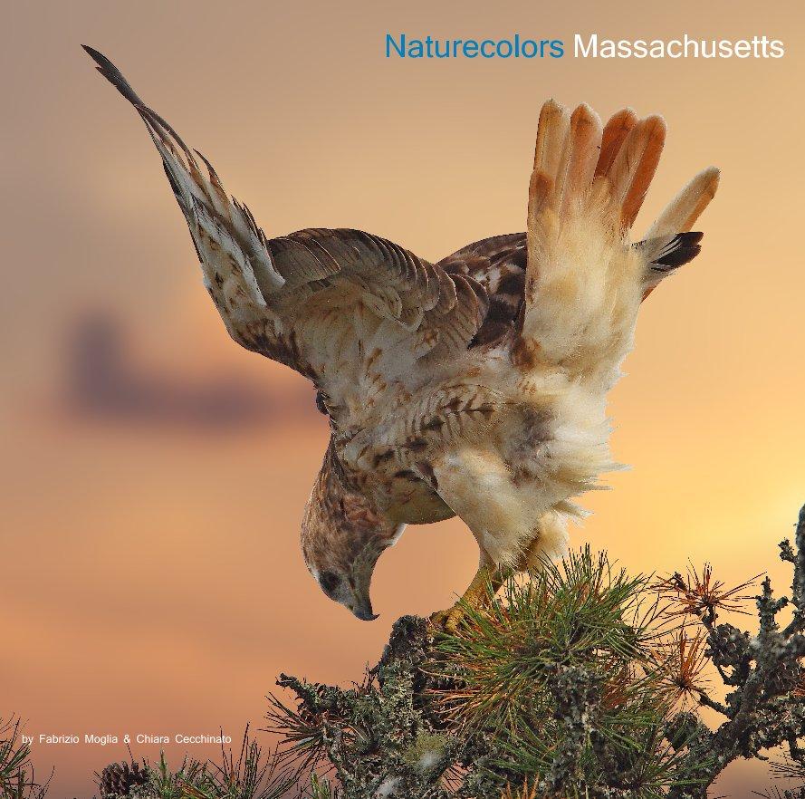 View Naturecolors Massachusetts by Fabrizio Moglia & Chiara Cecchinato