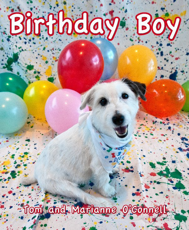 View Birthday Boy by Tom and Marianne O'Connell