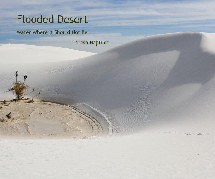 View Flooded Desert by Teresa Neptune