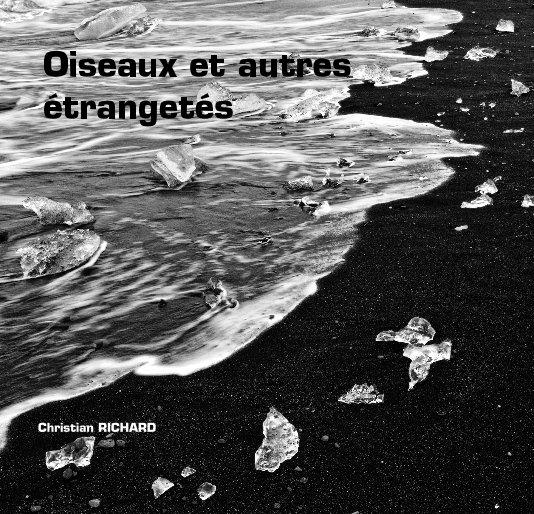 View Oiseaux et autres étrangetés by Christian RICHARD