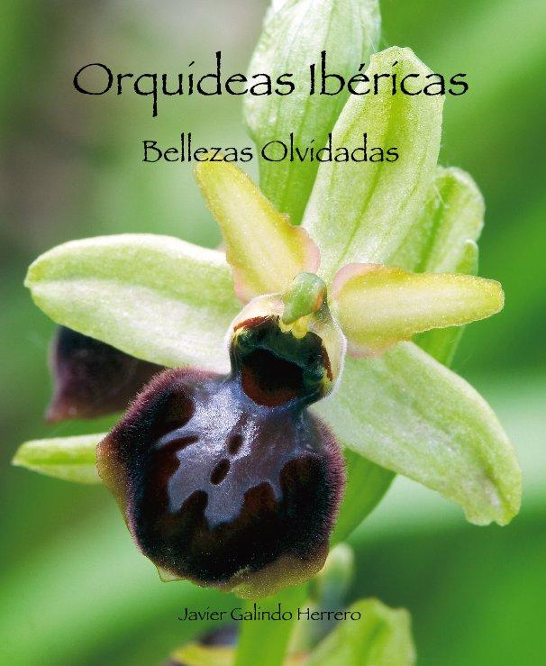 Ver Orquideas Ibéricas por Javier Galindo Herrero
