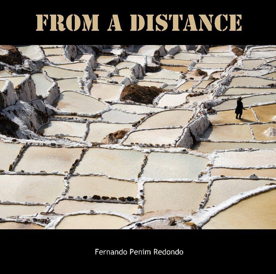 Ver From a Distance por Fernando Penim Redondo