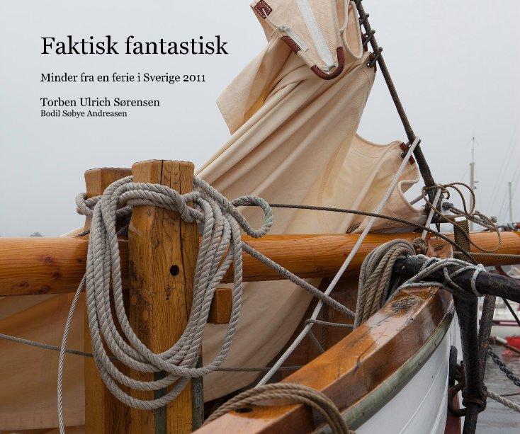 View Faktisk fantastisk by Torben Ulrich Sørensen Bodil Søbye Andreasen