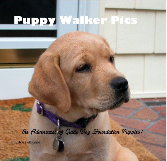 Puppy Walker Pics By Joe Pellicone Blurb Books