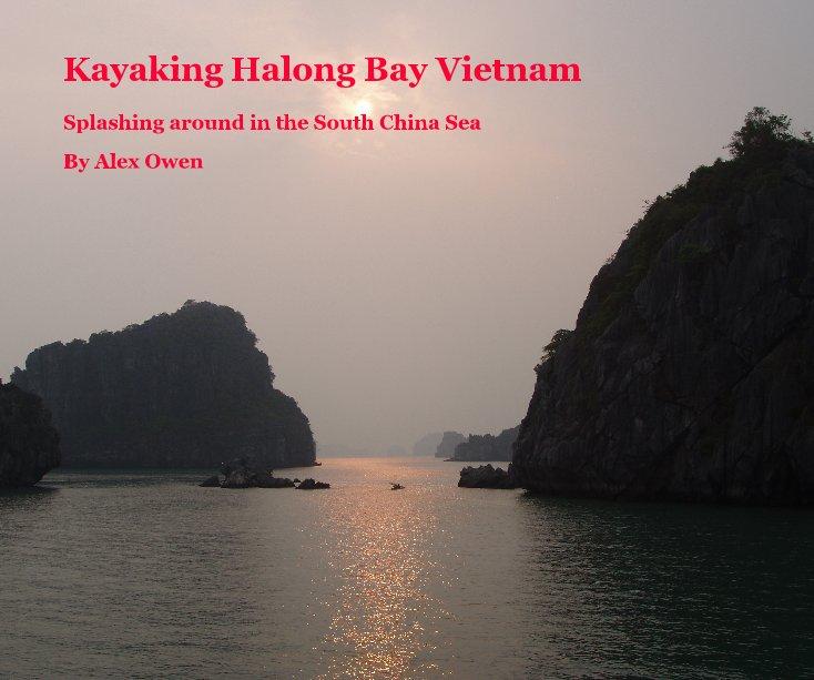 View Kayaking Halong Bay Vietnam by Alex Owen