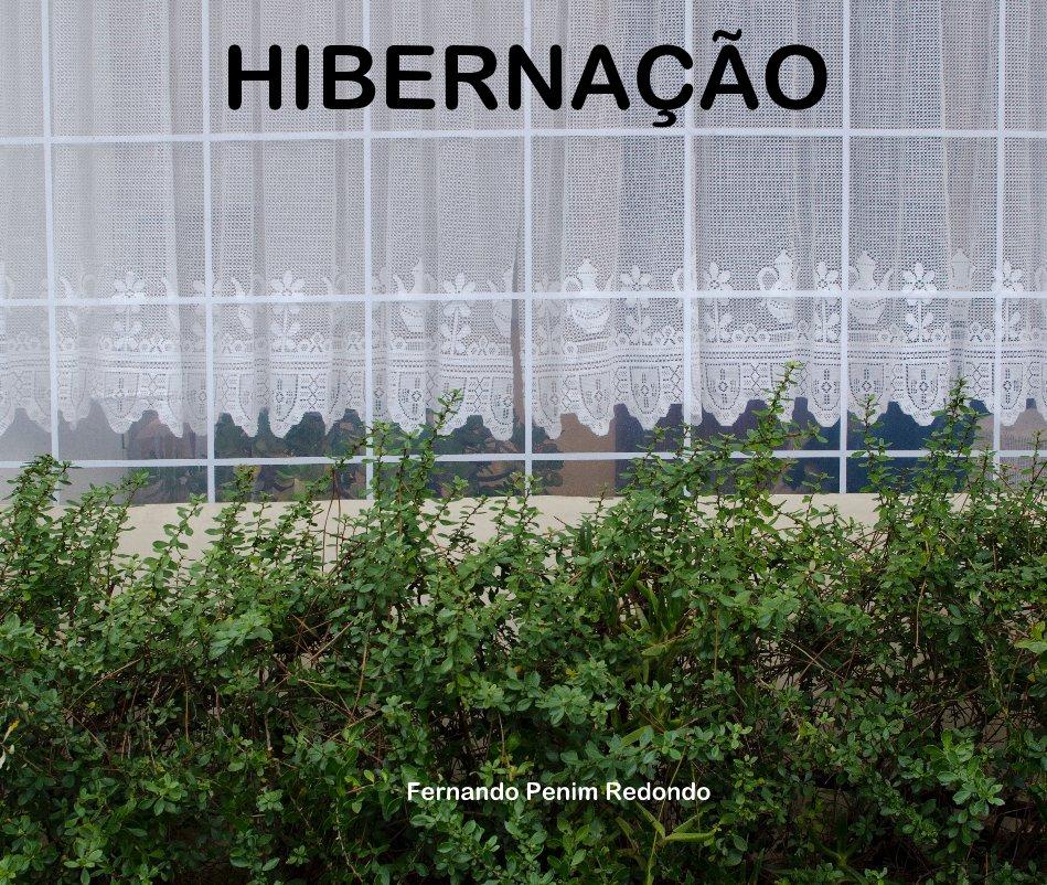 Ver HIBERNAÇÃO por Fernando Penim Redondo
