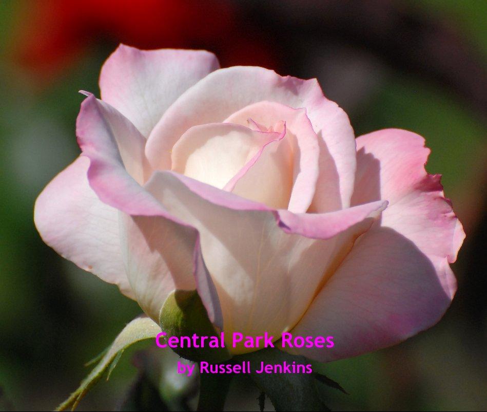 Ver Central Park Roses por Russell Jenkins cfotos4fun@yahoo.com