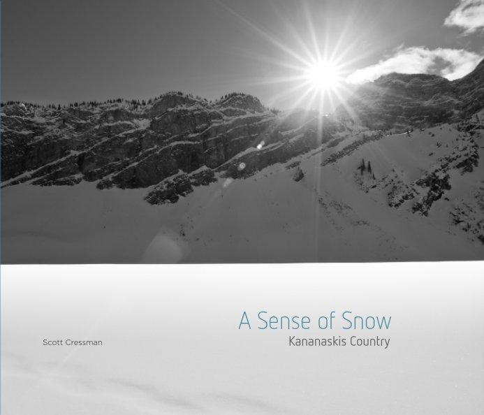 View A Sense of Snow by Scott Cressman