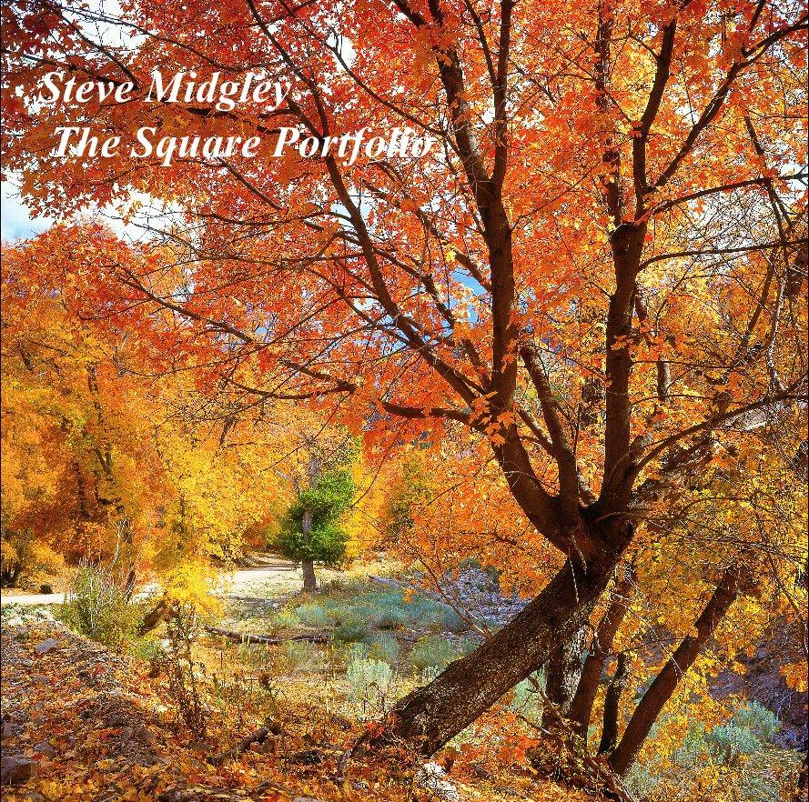 "View Steve Midgley   The Square Portfolio (12"") by Steve Midgley"