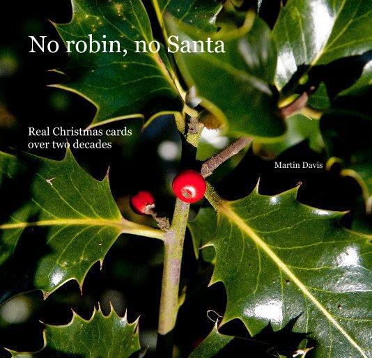 View No robin, no Santa by Martin Davis