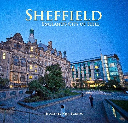 View Sheffield by Nige Burton