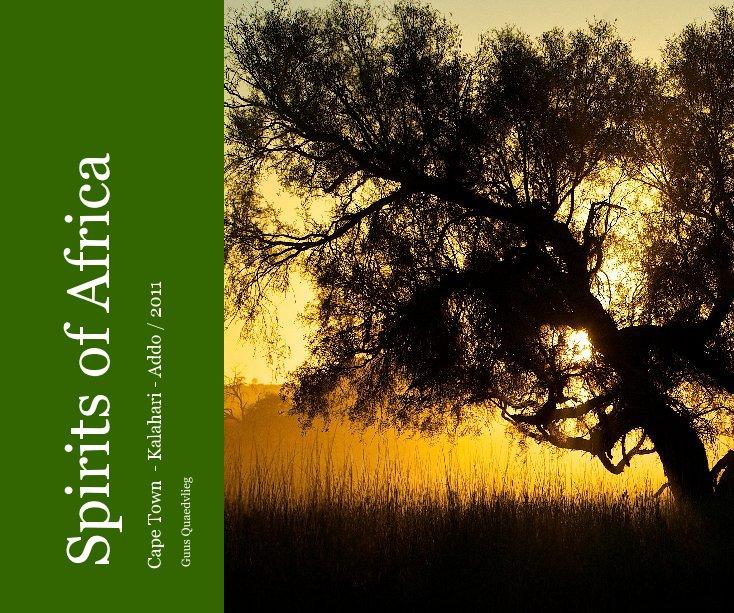 Bekijk Spirits of Africa op Guus Quaedvlieg