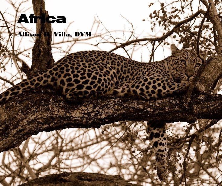 View Africa by Allison H. Villa, DVM