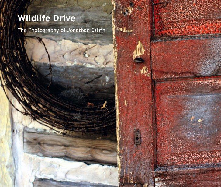 View Wildlife Drive by Jonathan Estrin