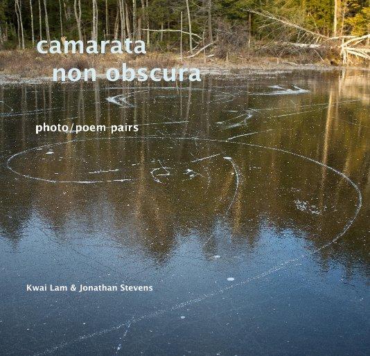 View camarata non obscura by Kwai Lam & Jonathan Stevens