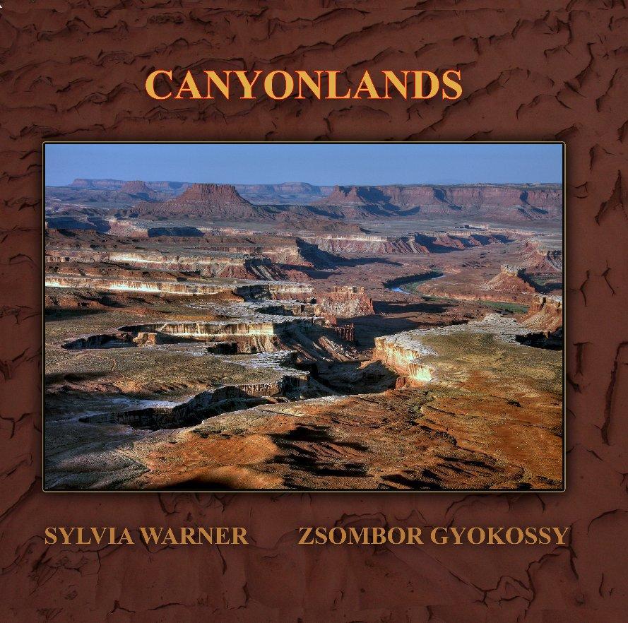 Bekijk Canyonlands op Sylvia Warner {text} Zsombor Gyokossy {photographs}