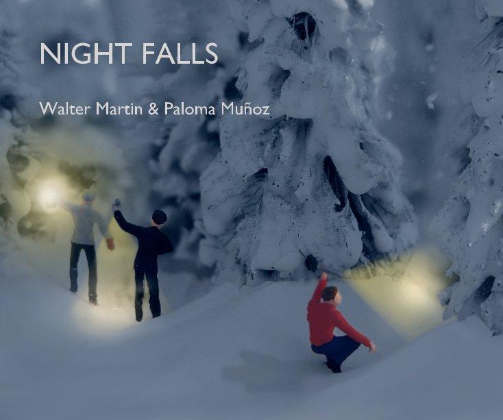 View NIGHT FALLS by Walter Martin & Paloma Muñoz
