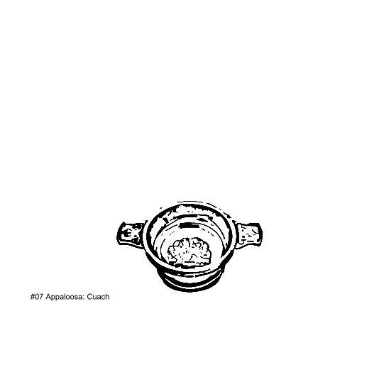 View #07/Appaloosa: Cuach by Samuel Bedford