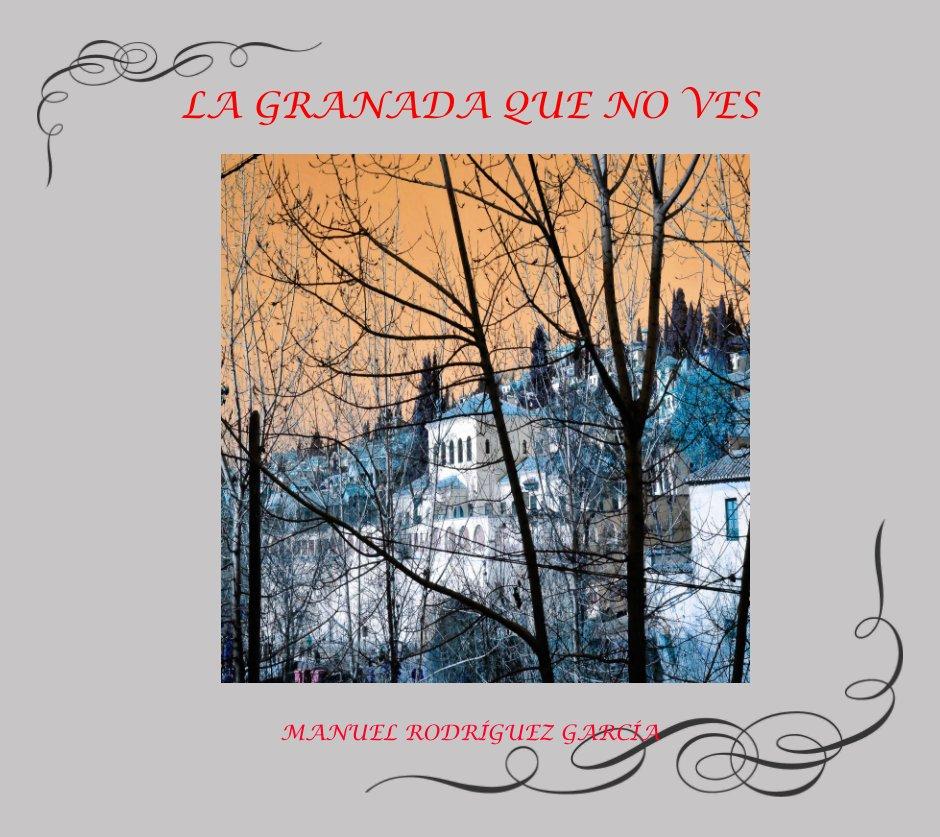 Ver LA GRANADA QUE NO VES por MANUEL RODRIGUEZ GARCIA
