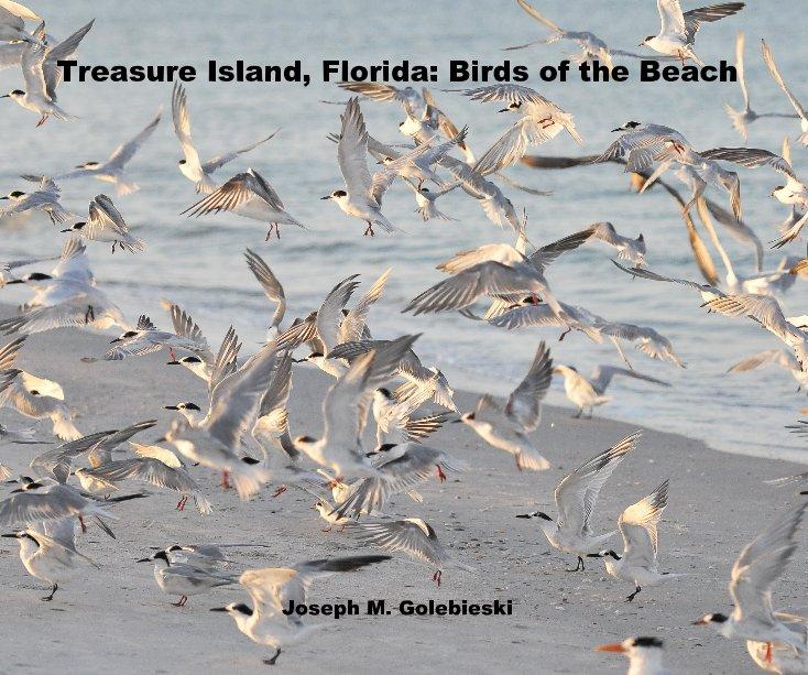 View Treasure Island, Florida: Birds of the Beach by Joseph M. Golebieski