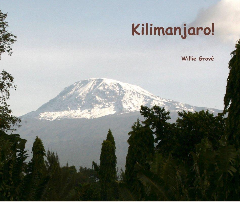 View Kilimanjaro! by Willie Grové