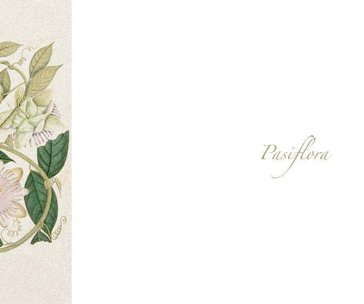 View Pasiflora by nirvana paz