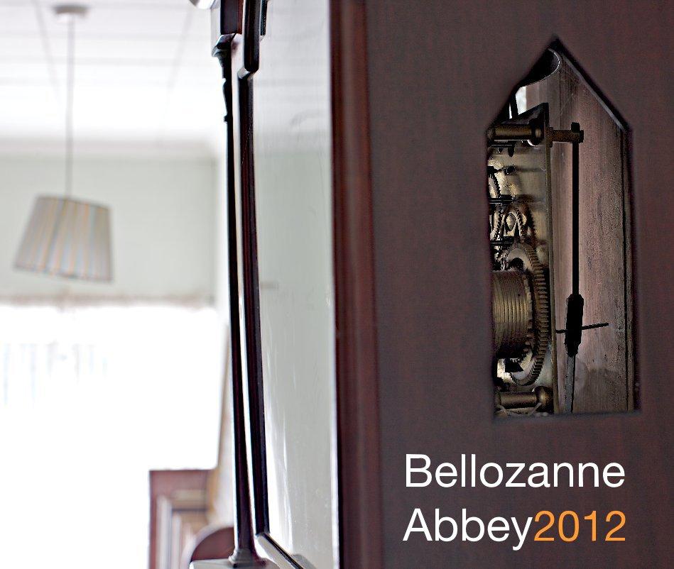 View Bellozanne Abbey by Patrick Clarke