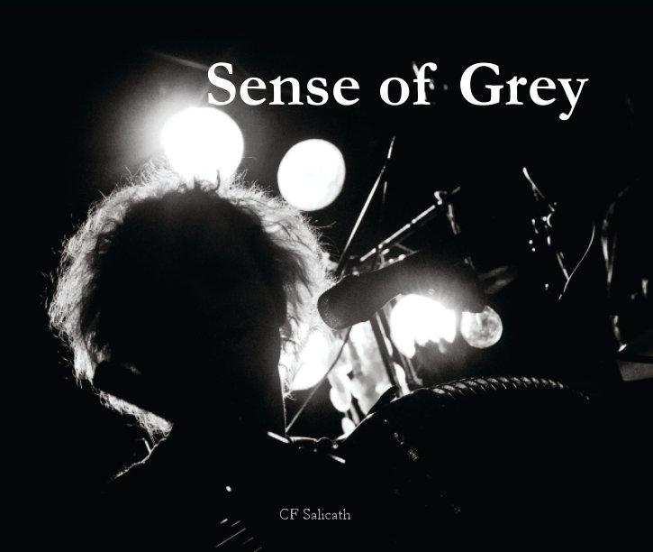 View Sense of Grey by CF Salicath