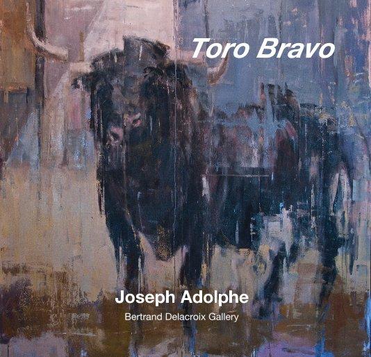 View Toro Bravo by Bertrand Delacroix Gallery