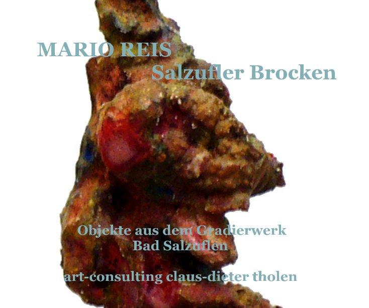 MARIO REIS | Salzufler Brocken nach AC art - consulting claus-dieter tholen anzeigen