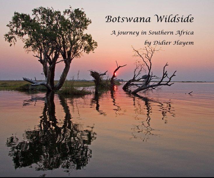 View Botswana Wildside by Didier Hayem