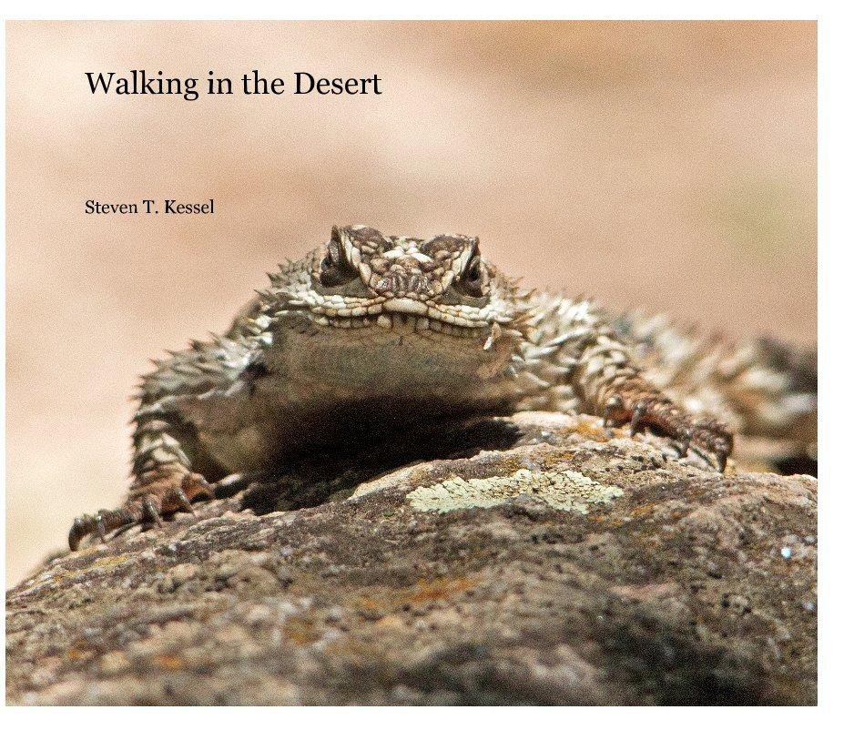 View Walking in the Desert by Steven T. Kessel