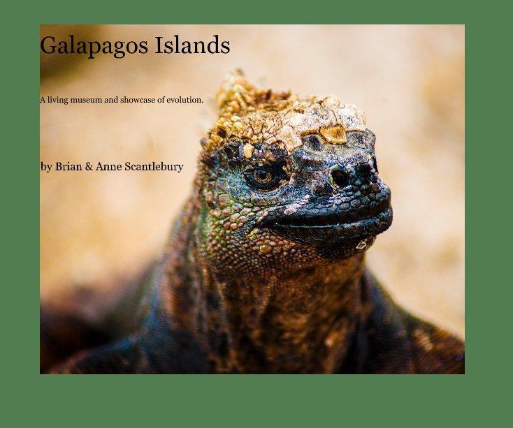 View Galapagos Islands by Brian & Anne Scantlebury