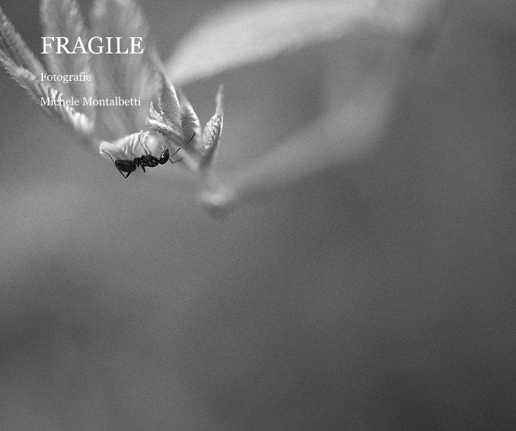 View FRAGILE by Michele Montalbetti