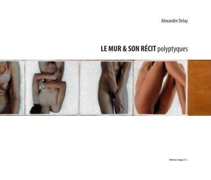 LE MUR & SON RÉCIT polyptyques - Beaux-arts livre photo