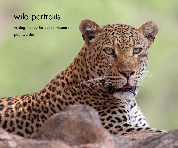 View wild portraits by paul waldron
