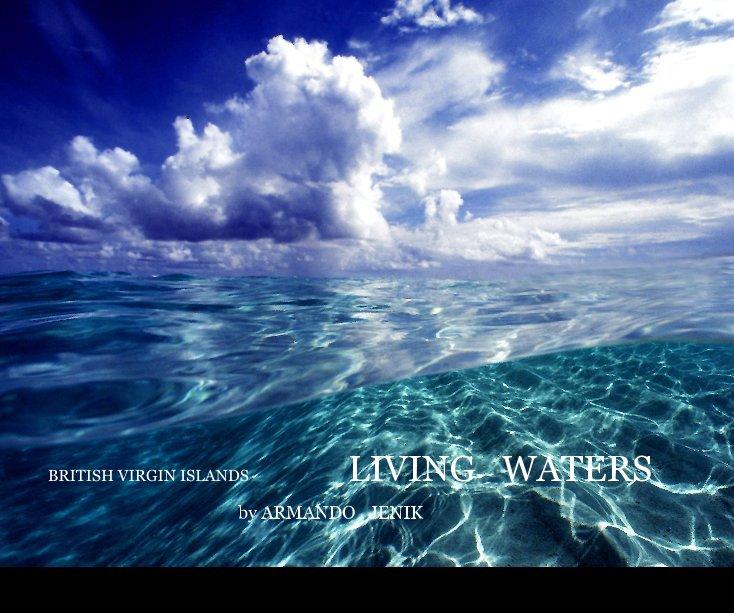 View BRITISH VIRGIN ISLANDS LIVING WATERS by ARMANDO JENIK