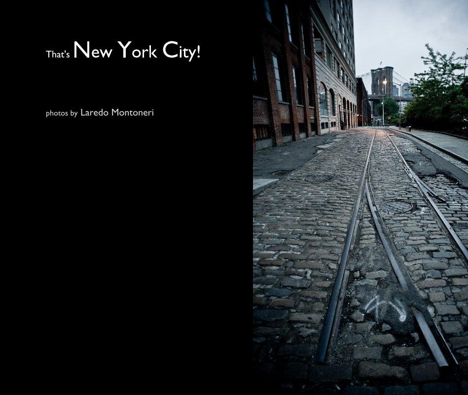 View That's New York City! by Laredo Montoneri
