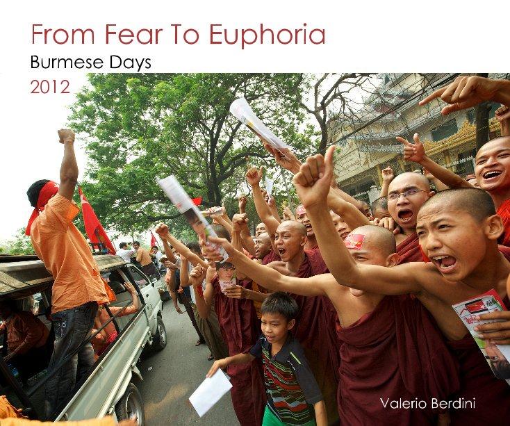 Ver From Fear To Euphoria por Valerio Berdini