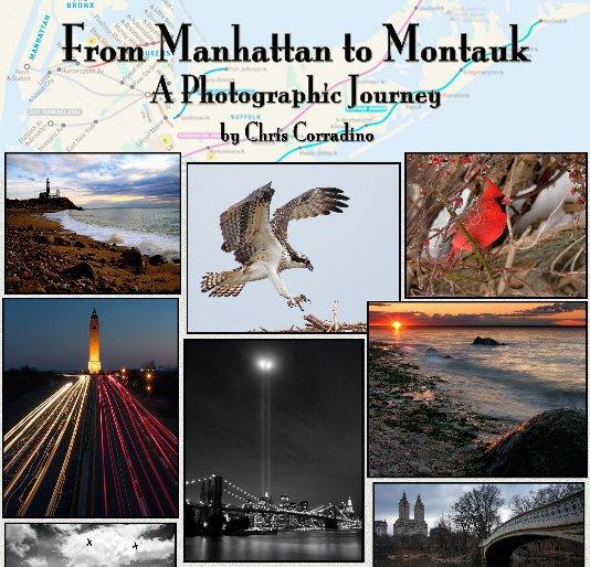 View From Manhattan to Montauk by Chris Corradino