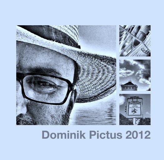 View Dominik Pictus 2012 by dominiklukes